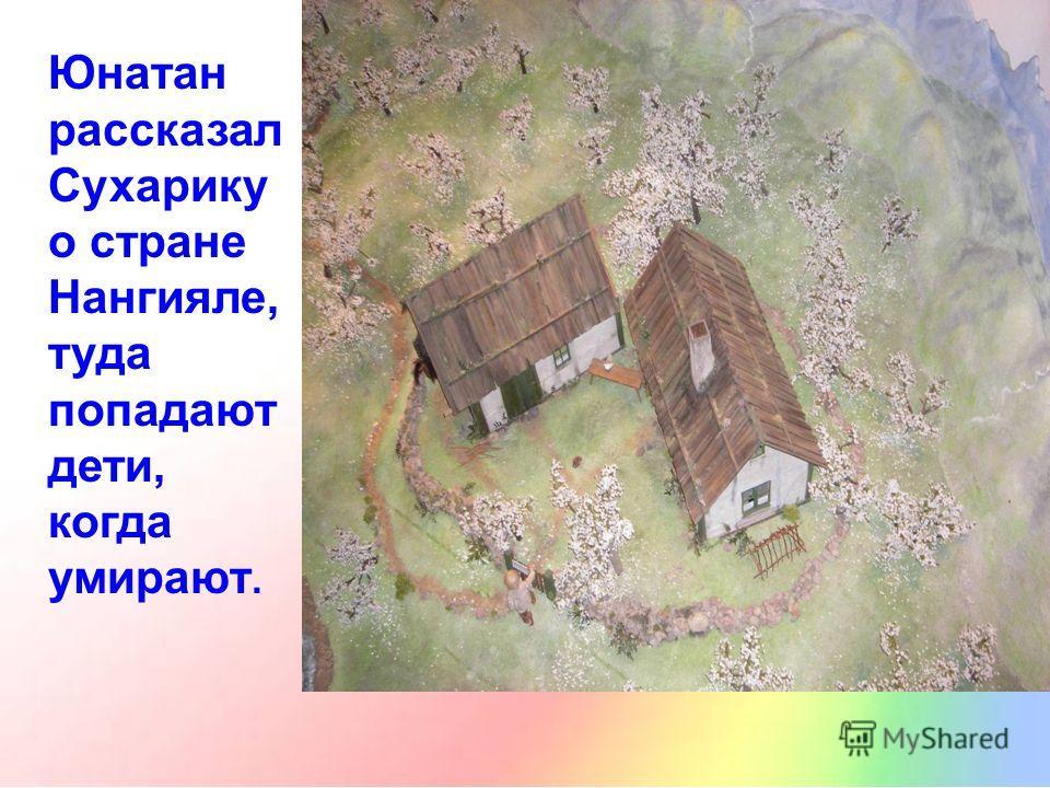 Юнатан рассказал Сухарику о стране Нангияле, туда попадают дети, когда умирают.