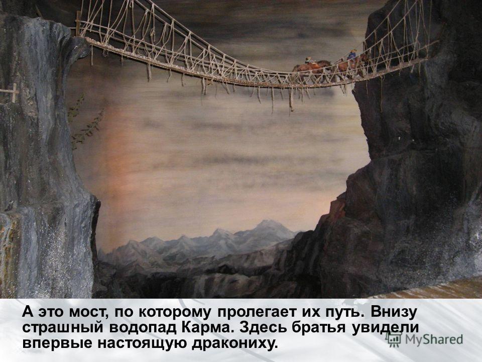 А это мост, по которому пролегает их путь. Внизу страшный водопад Карма. Здесь братья увидели впервые настоящую дракониху.