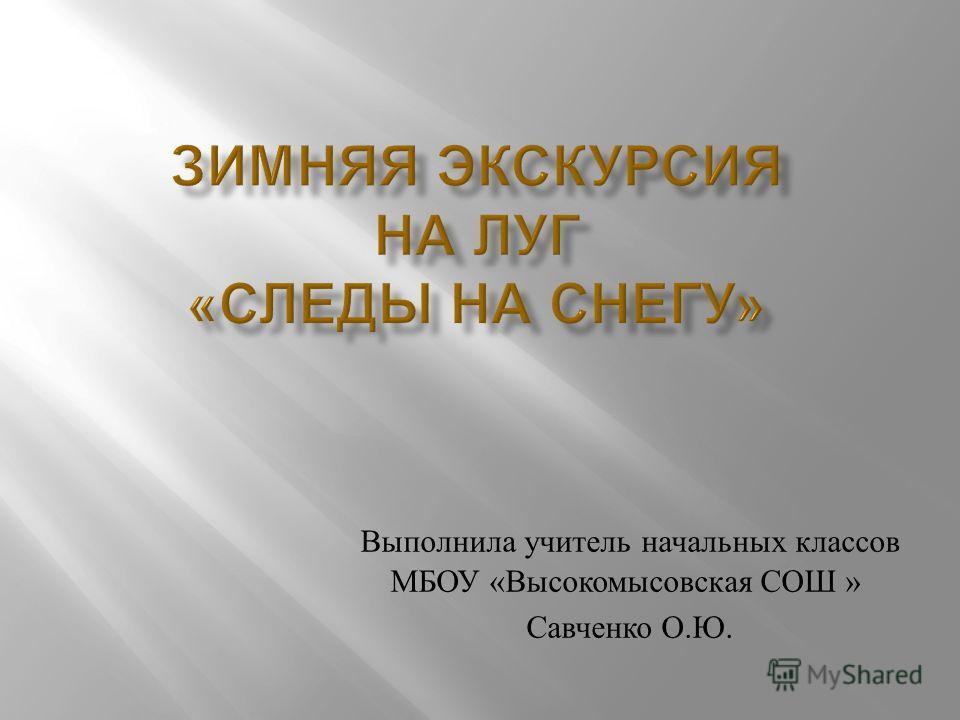 Выполнила учитель начальных классов МБОУ « Высокомысовская СОШ » Савченко О. Ю.