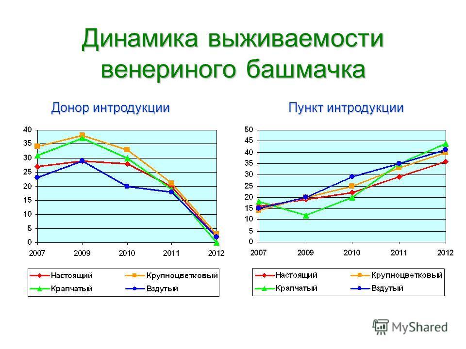 Динамика выживаемости венериного башмачка Пункт интродукции Донор интродукции