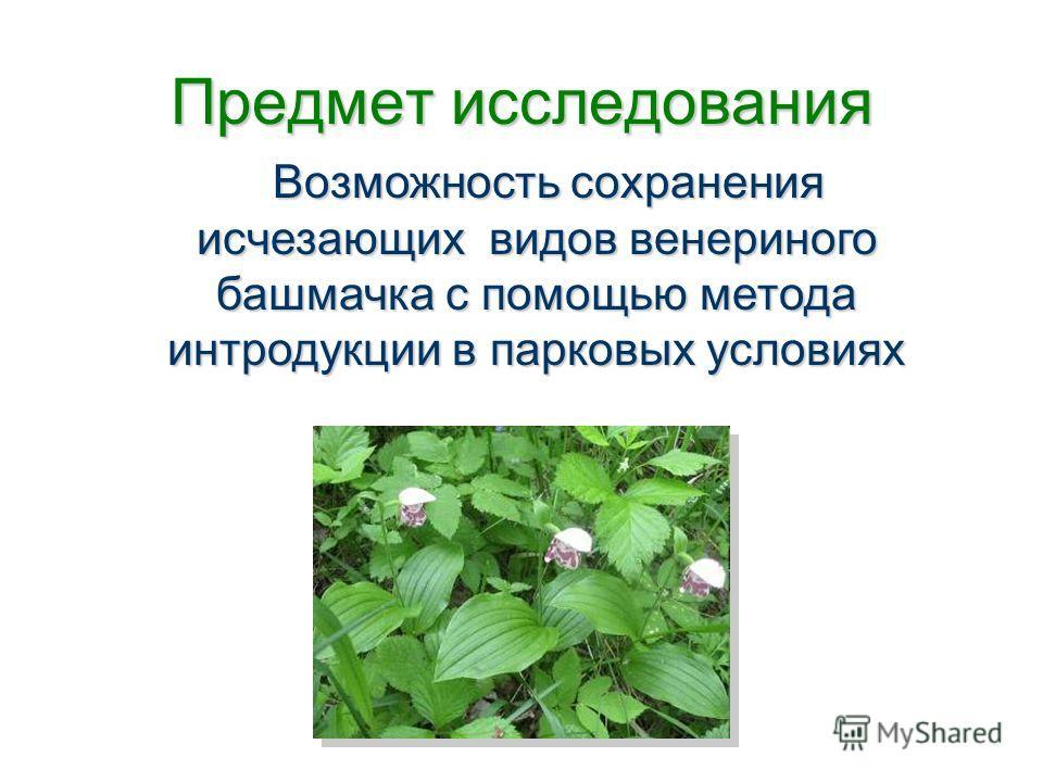 Предмет исследования Возможность сохранения исчезающих видов венериного башмачка с помощью метода интродукции в парковых условиях