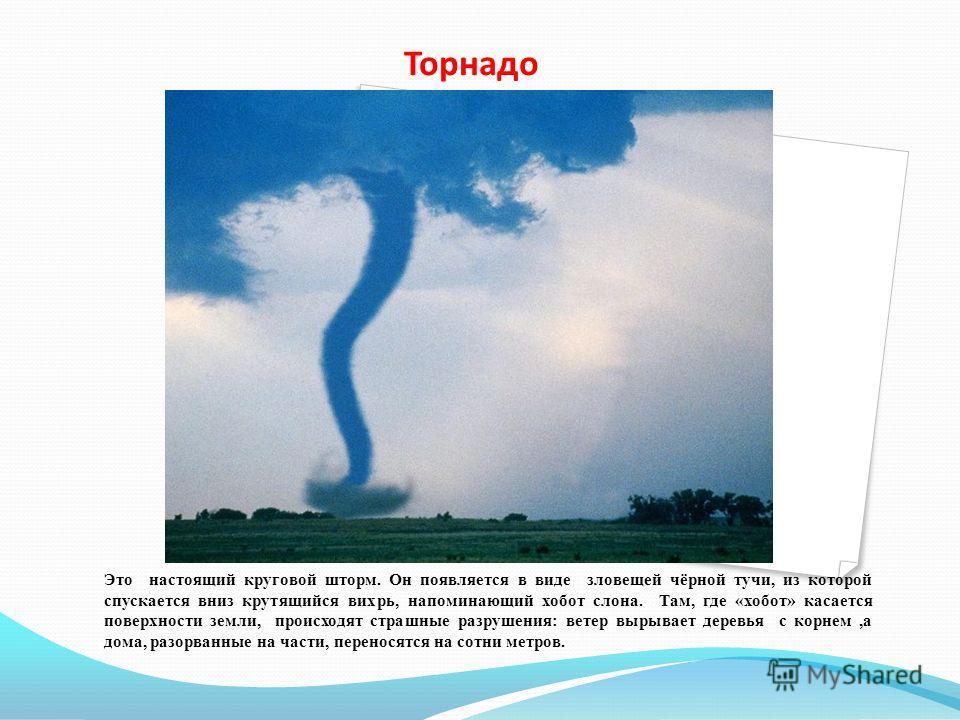 Торнадо Это настоящий круговой шторм. Он появляется в виде зловещей чёрной тучи, из которой спускается вниз крутящийся вихрь, напоминающий хобот слона. Там, где «хобот» касается поверхности земли, происходят страшные разрушения: ветер вырывает деревь