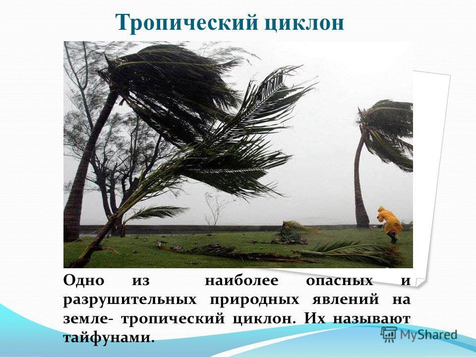 Тропический циклон Одно из наиболее опасных и разрушительных природных явлений на земле- тропический циклон. Их называют тайфунами.