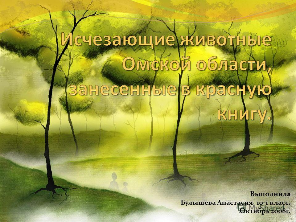 Выполнила Булышева Анастасия, 10-1 класс. Октябрь 2008г.