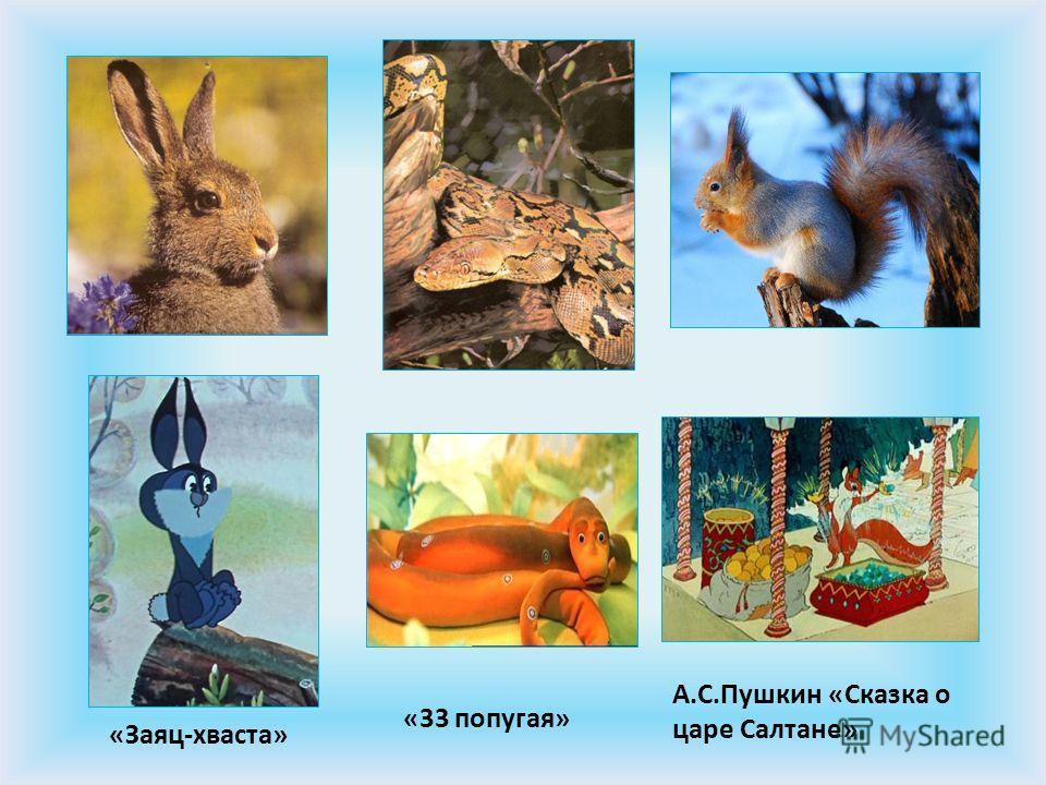 «Заяц-хваста» «33 попугая» А.С.Пушкин «Сказка о царе Салтане»