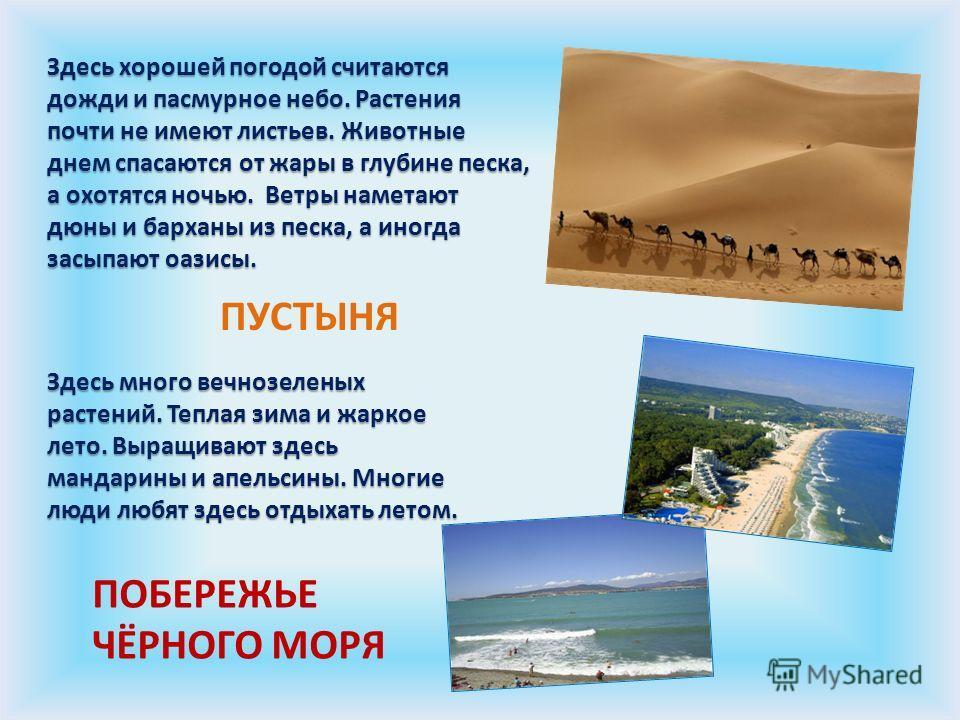 Здесь хорошей погодой считаются дожди и пасмурное небо. Растения почти не имеют листьев. Животные днем спасаются от жары в глубине песка, а охотятся ночью. Ветры наметают дюны и барханы из песка, а иногда засыпают оазисы. Здесь много вечнозеленых рас