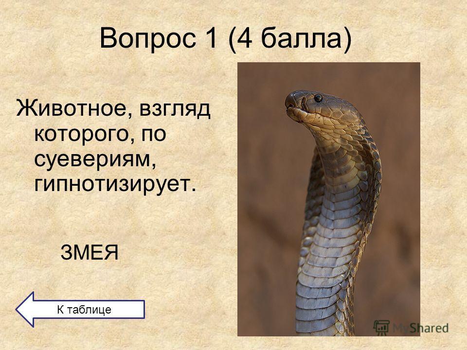 Вопрос 1 (4 балла) Животное, взгляд которого, по суевериям, гипнотизирует. ЗМЕЯ К таблице