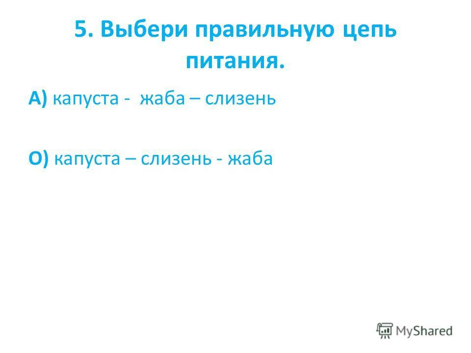 5. Выбери правильную цепь питания. А) капуста - жаба – слизень О) капуста – слизень - жаба