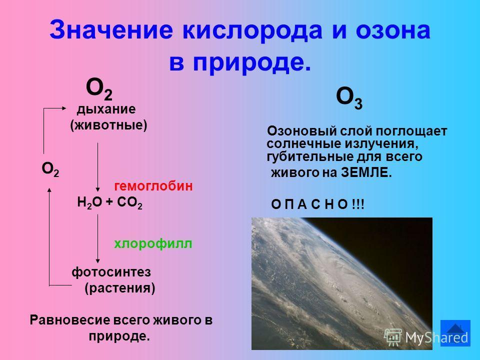 Значение кислорода и озона в природе. О 2 дыхание (животные) О 2 гемоглобин Н 2 О + СО 2 хлорофилл фотосинтез (растения) Равновесие всего живого в природе. О 3 Озоновый слой поглощает солнечные излучения, губительные для всего живого на ЗЕМЛЕ. О П А