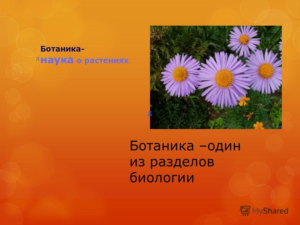 Ботаника- наука о растениях д д Ботаника –один из разделов биологии