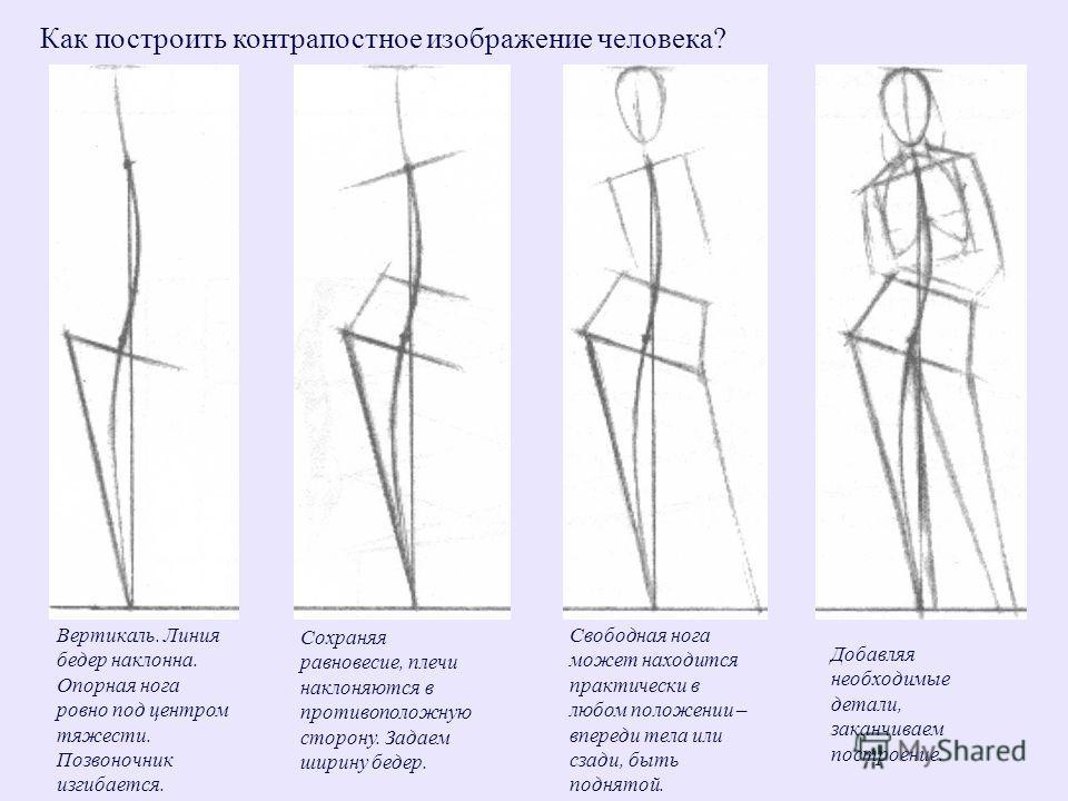 Как построить контрапостное изображение человека? Вертикаль. Линия бедер наклонна. Опорная нога ровно под центром тяжести. Позвоночник изгибается. Сохраняя равновесие, плечи наклоняются в противоположную сторону. Задаем ширину бедер. Свободная нога м