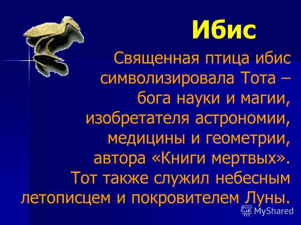Ибис Священная птица ибис символизировала Тота – бога науки и магии, изобретателя астрономии, медицины и геометрии, автора «Книги мертвых». Тот также служил небесным летописцем и покровителем Луны.