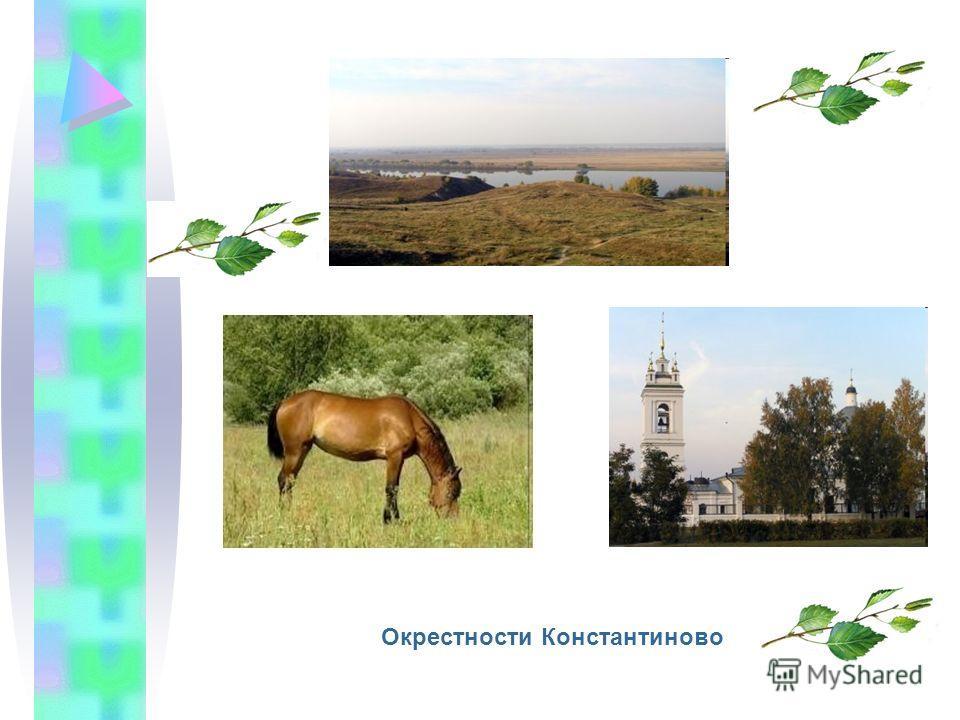 Окрестности Константиново