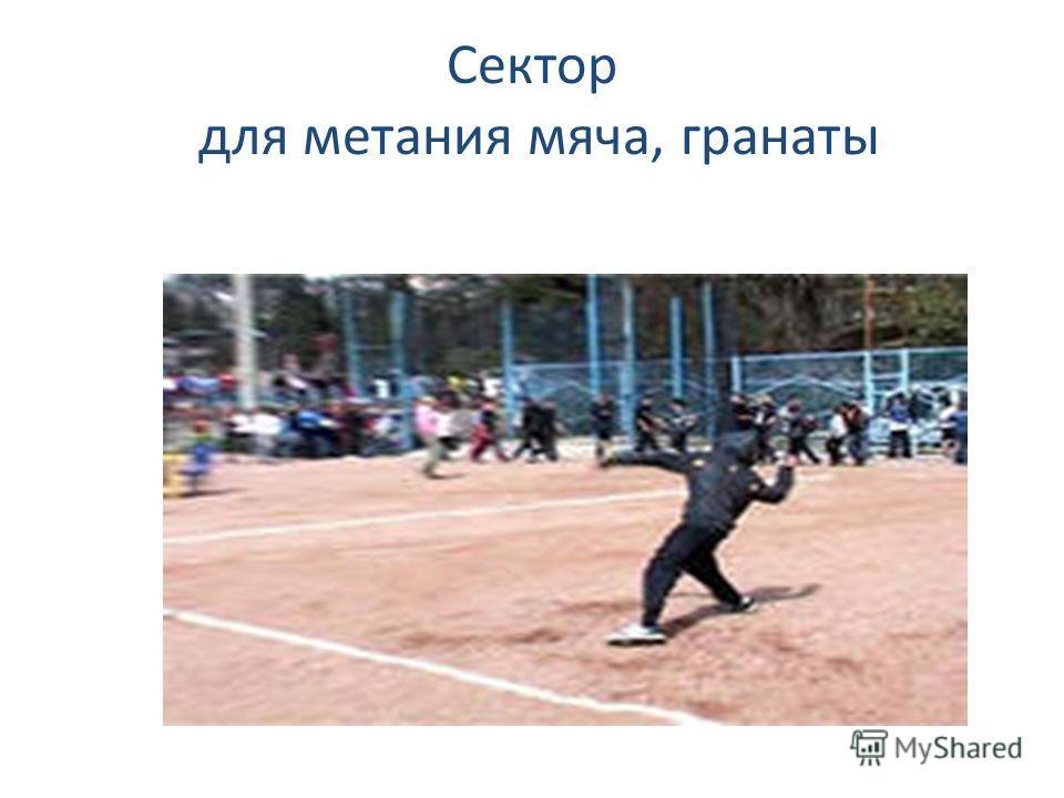 Сектор для метания мяча, гранаты