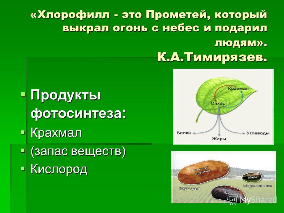 «Хлорофилл - это Прометей, который выкрал огонь с небес и подарил людям». К.А.Тимирязев. Продукты фотосинтеза : Продукты фотосинтеза : Крахмал Крахмал (запас веществ) (запас веществ) Кислород Кислород
