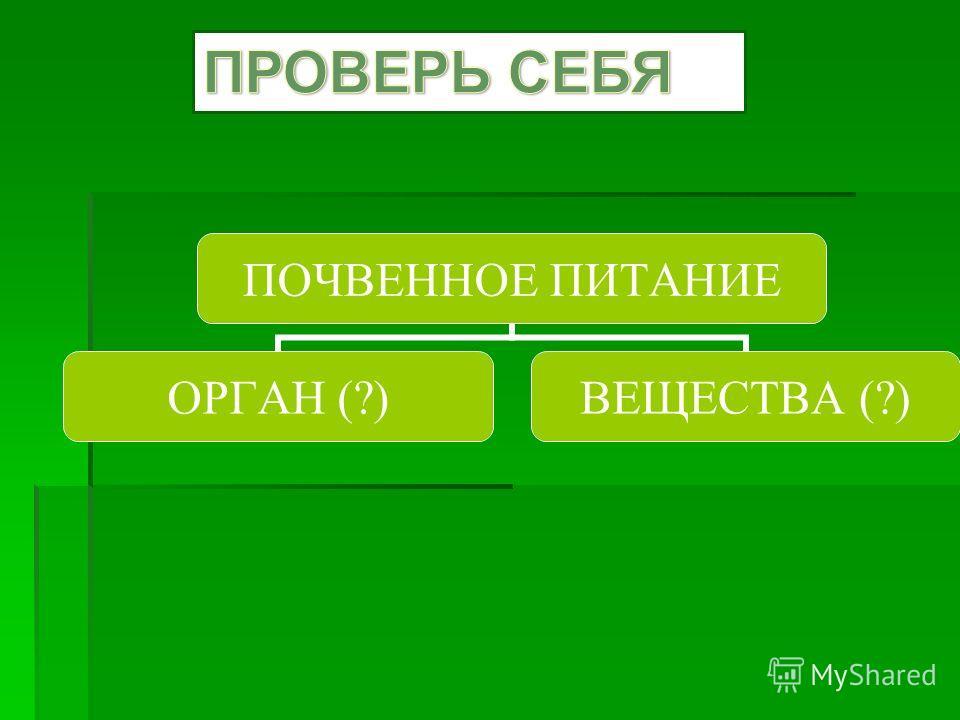 ПОЧВЕННОЕ ПИТАНИЕ ОРГАН (?) ВЕЩЕСТВА (?)