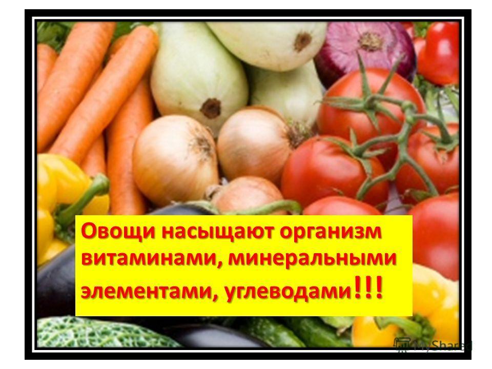 Овощи насыщают организм витаминами, минеральными элементами, углеводами !!!