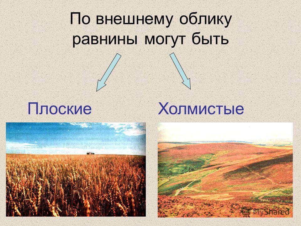 По внешнему облику равнины могут быть Плоские Холмистые