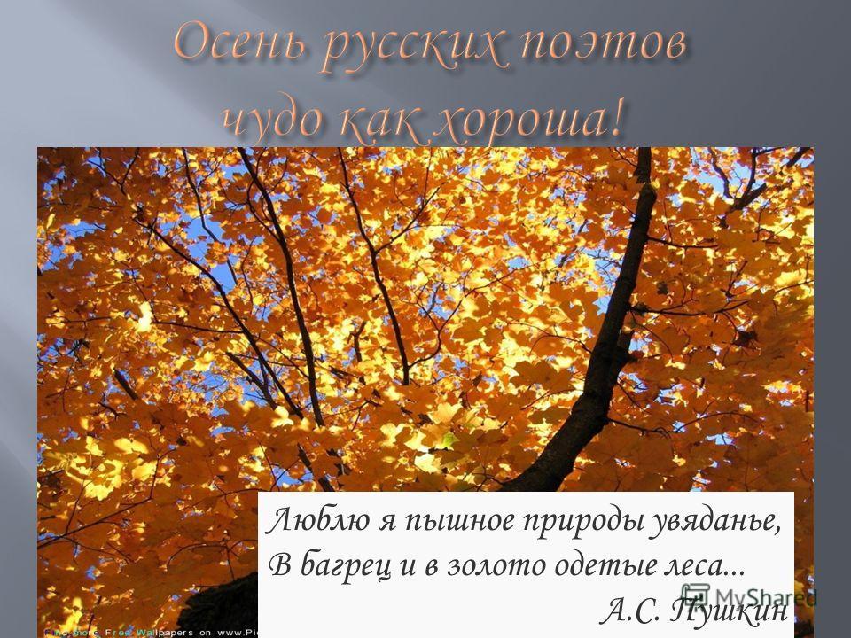 Люблю я пышное природы увяданье, В багрец и в золото одетые леса... А.С. Пушкин