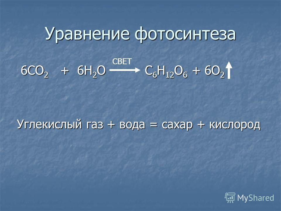 Уравнение фотосинтеза 6СО 2 + 6Н 2 О С 6 Н 12 О 6 + 6О 2 6СО 2 + 6Н 2 О С 6 Н 12 О 6 + 6О 2 Углекислый газ + вода = сахар + кислород СВЕТ