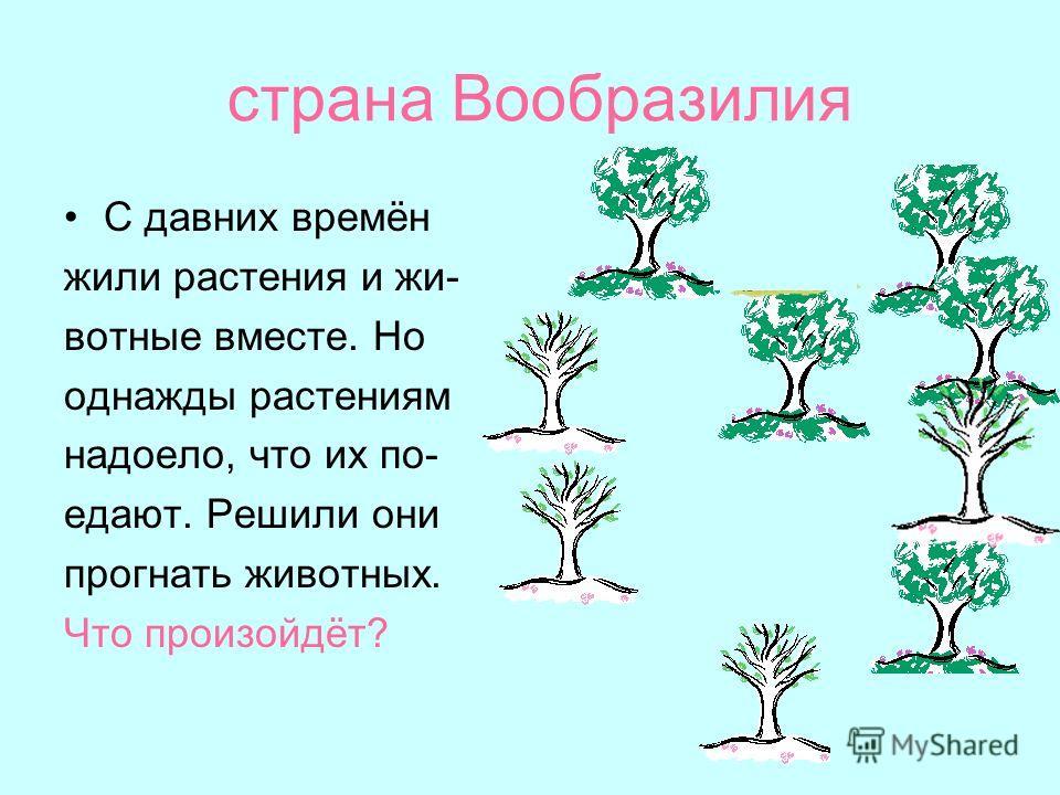 страна Вообразилия С давних времён жили растения и жи- вотные вместе. Но однажды растениям надоело, что их по- едают. Решили они прогнать животных. Что произойдёт?