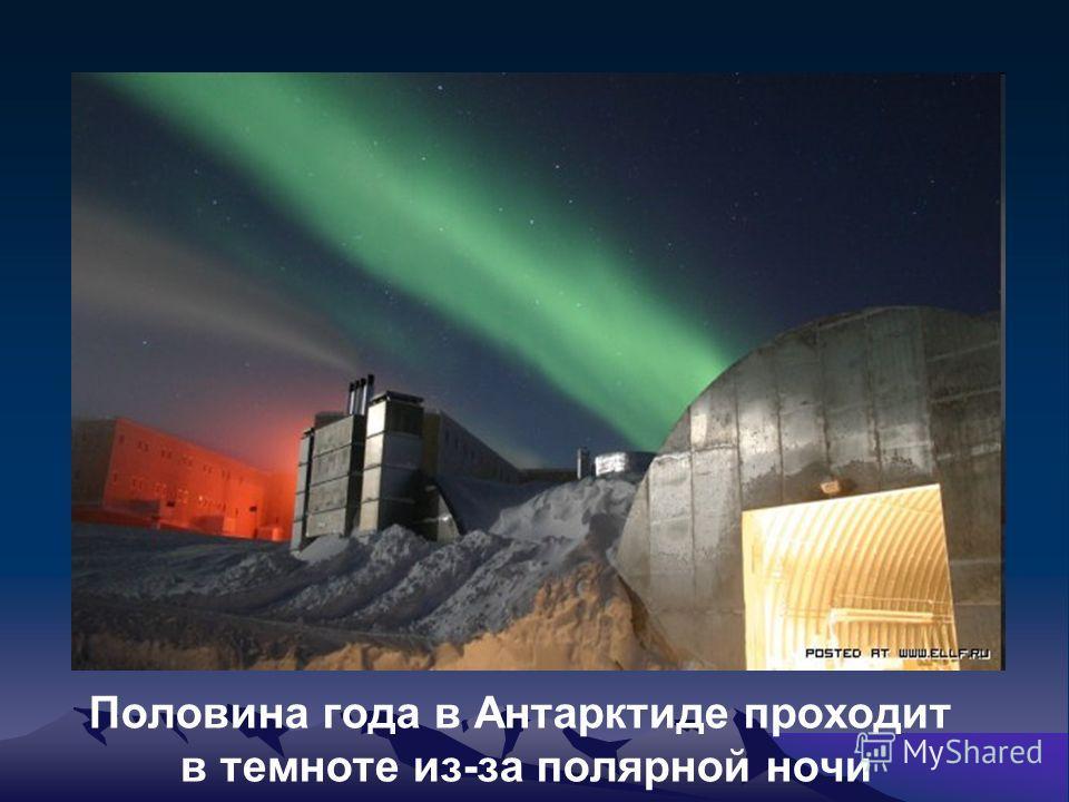 Половина года в Антарктиде проходит в темноте из-за полярной ночи
