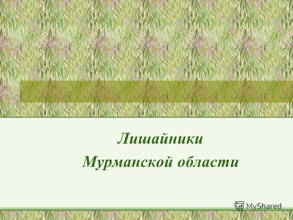 Лишайники Мурманской области