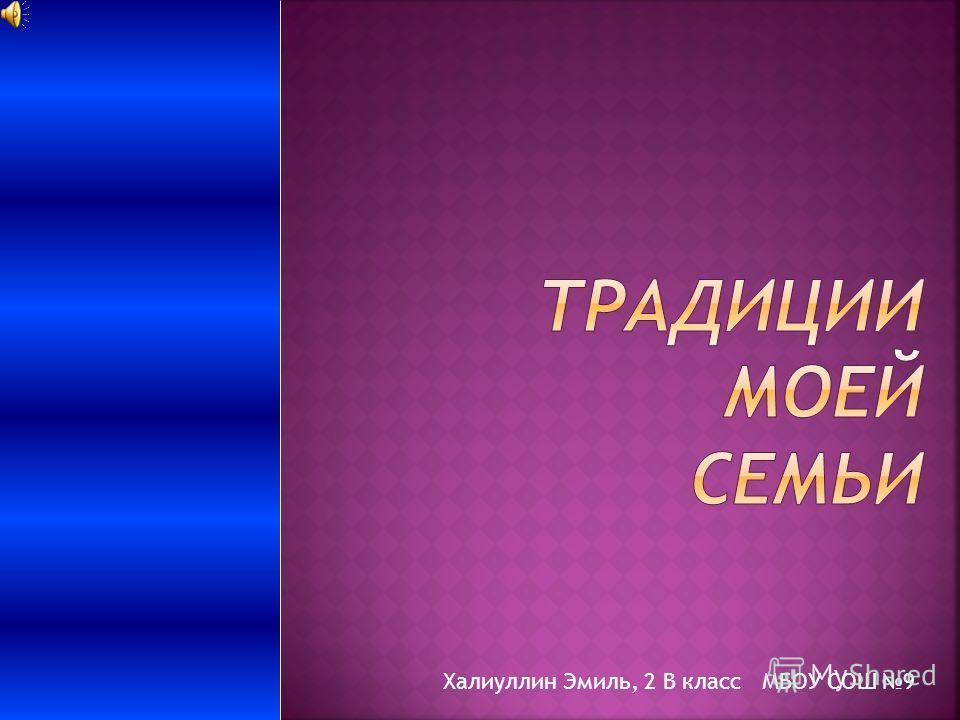 Халиуллин Эмиль, 2 В класс МБОУ СОШ 9