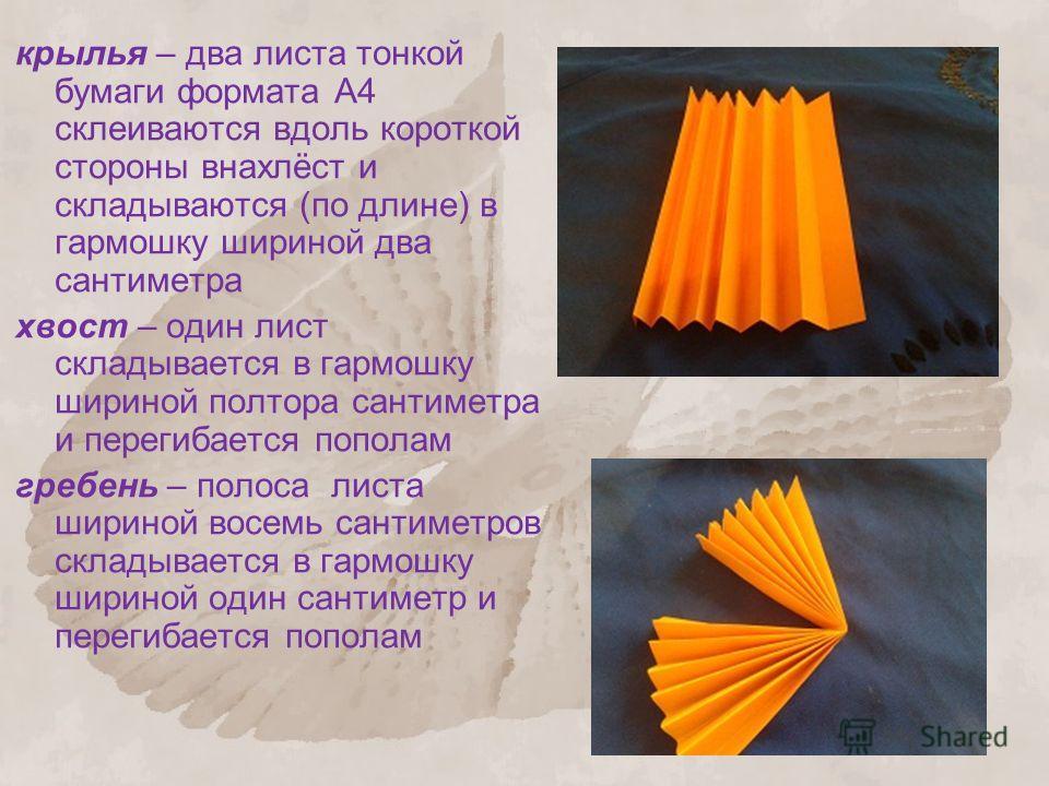 крылья – два листа тонкой бумаги формата А4 склеиваются вдоль короткой стороны внахлёст и складываются (по длине) в гармошку шириной два сантиметра хвост – один лист складывается в гармошку шириной полтора сантиметра и перегибается пополам гребень –
