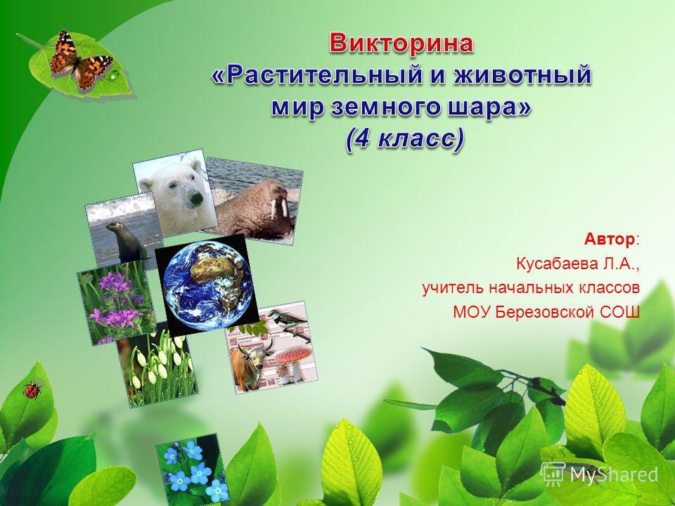 Автор: Кусабаева Л.А., учитель начальных классов МОУ Березовской СОШ