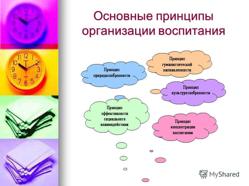 Основные принципы организации воспитания