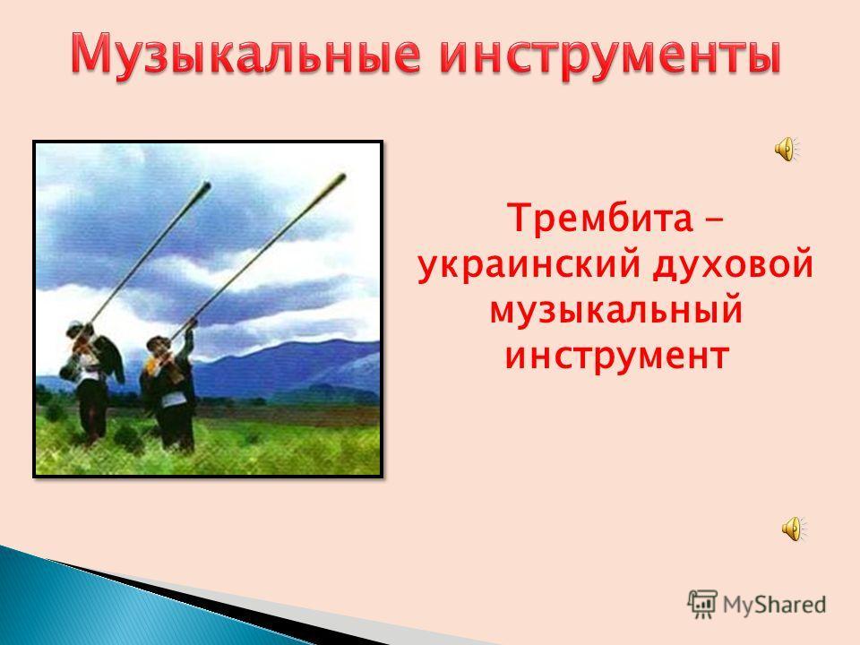 Трембита - украинский духовой музыкальный инструмент