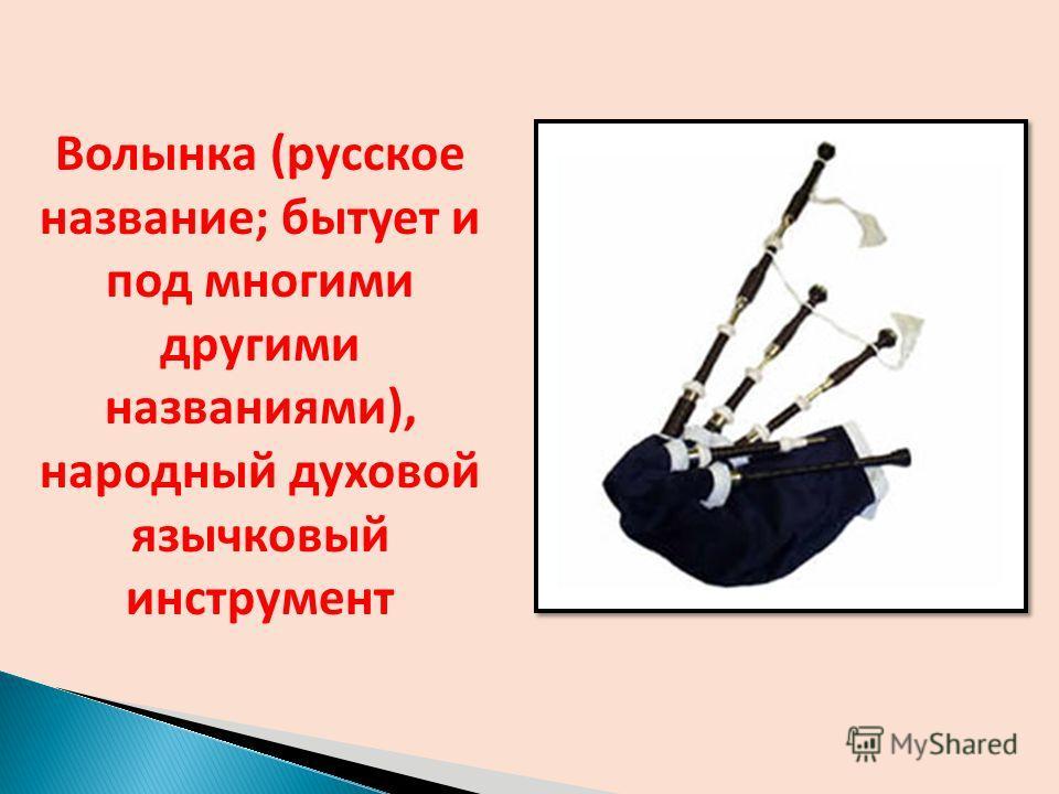 Волынка (русское название; бытует и под многими другими названиями), народный духовой язычковый инструмент