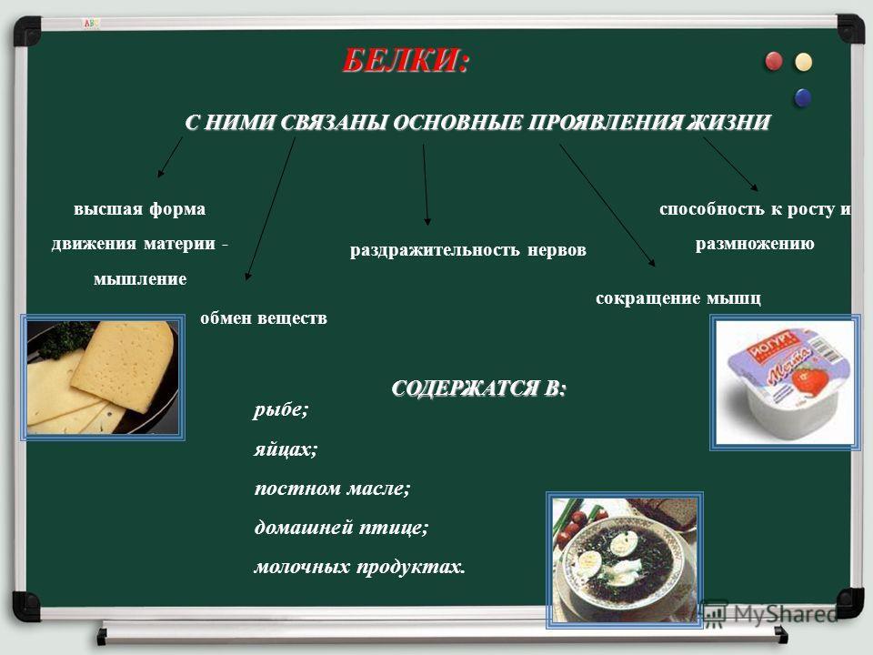 БЕЛКИ: С НИМИ СВЯЗАНЫ ОСНОВНЫЕ ПРОЯВЛЕНИЯ ЖИЗНИ обмен веществ высшая форма движения материи - мышление раздражительность нервов сокращение мышц рыбе; яйцах; постном масле; домашней птице; молочных продуктах. СОДЕРЖАТСЯ В: способность к росту и размно