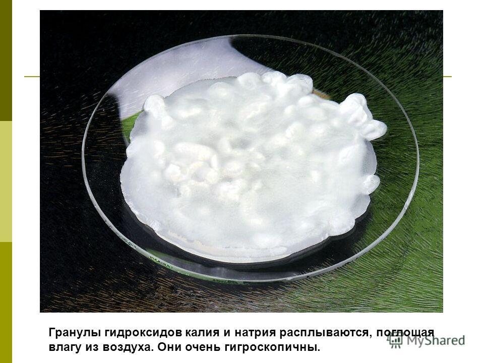 Гранулы гидроксидов калия и натрия расплываются, поглощая влагу из воздуха. Они очень гигроскопичны.