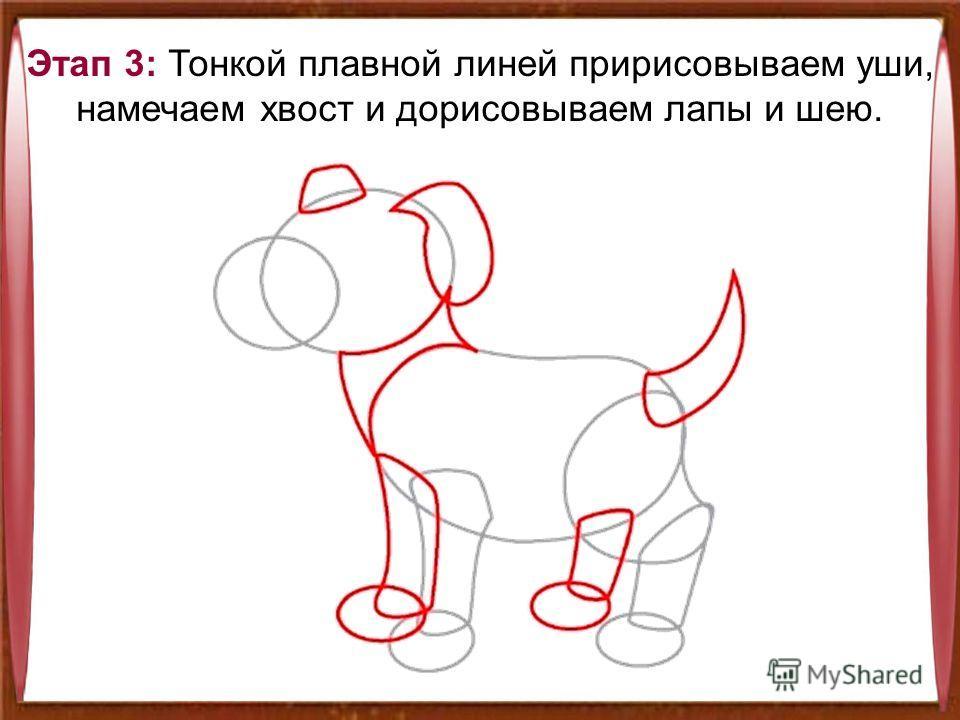 Этап 3: Тонкой плавной линей пририсовываем уши, намечаем хвост и дорисовываем лапы и шею.