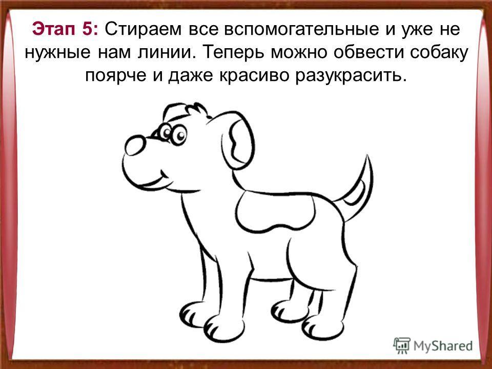 Этап 5: Стираем все вспомогательные и уже не нужные нам линии. Теперь можно обвести собаку поярче и даже красиво разукрасить.