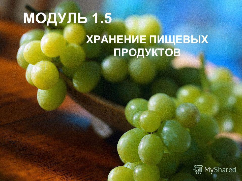 МОДУЛЬ 1.5 ХРАНЕНИЕ ПИЩЕВЫХ ПРОДУКТОВ