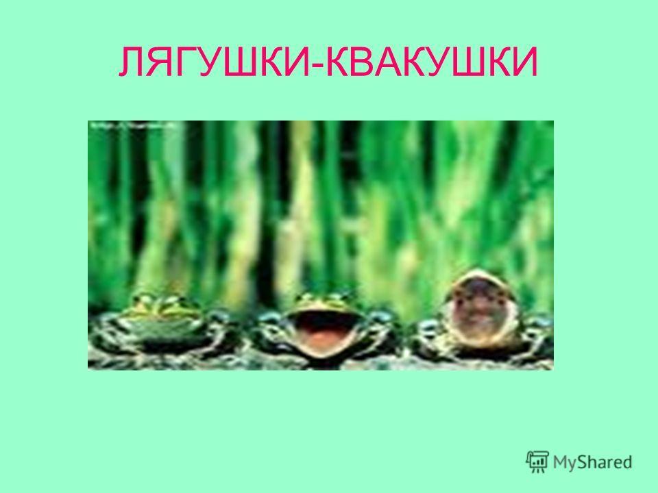 ЛЯГУШКИ-КВАКУШКИ