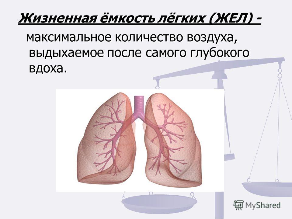 Жизненная ёмкость лёгких (ЖЕЛ) - максимальное количество воздуха, выдыхаемое после самого глубокого вдоха. максимальное количество воздуха, выдыхаемое после самого глубокого вдоха.