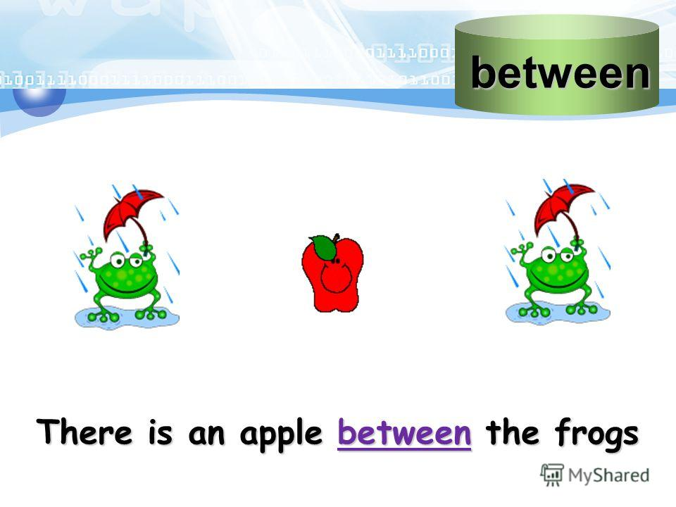 between There is an apple between the frogs