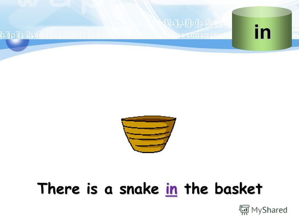 There is a snake in the basket in