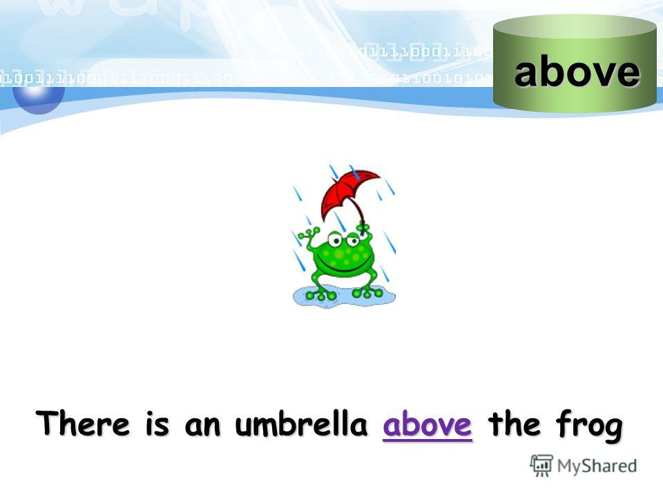 above There is an umbrella above the frog