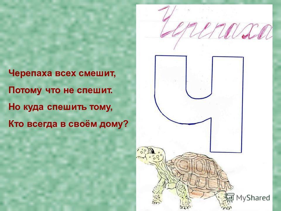 Черепаха всех смешит, Потому что не спешит. Но куда спешить тому, Кто всегда в своём дому?