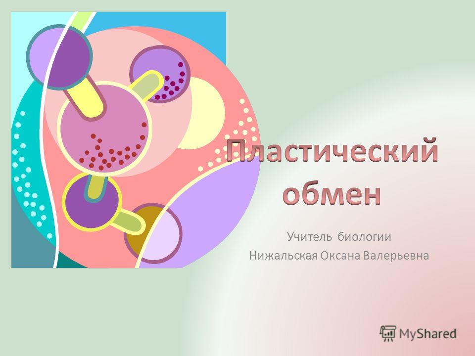 Учитель биологии Нижальская Оксана Валерьевна