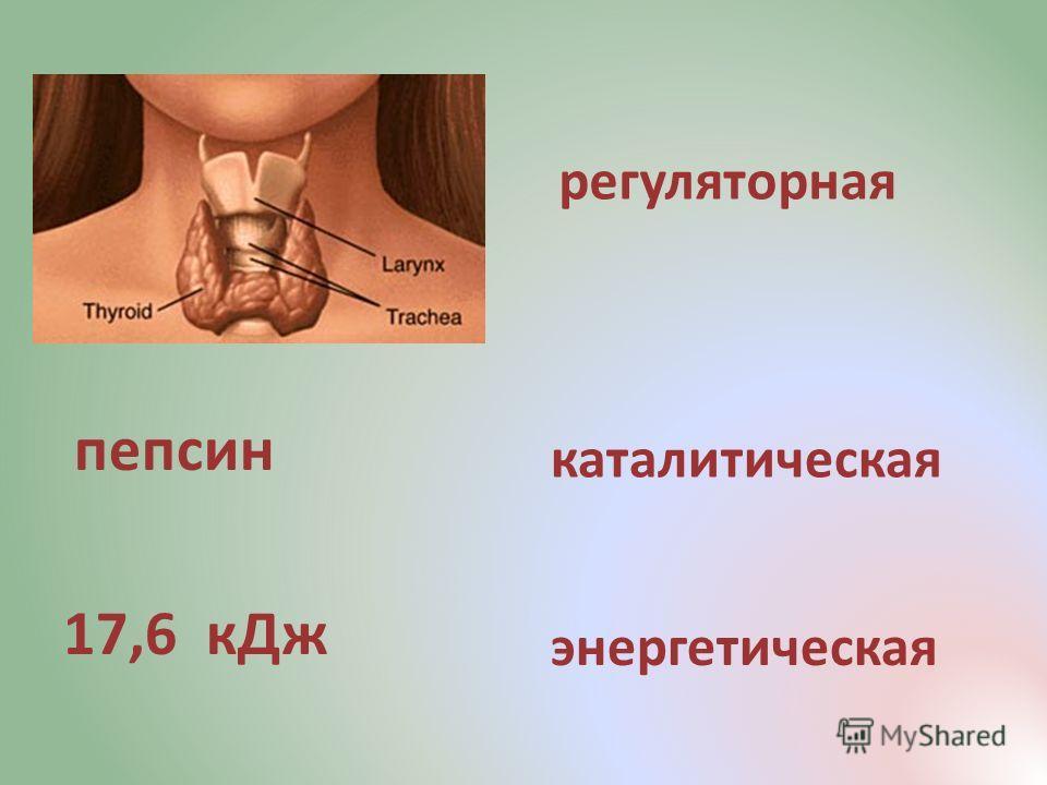 пепсин 17,6 кДж регуляторная каталитическая энергетическая