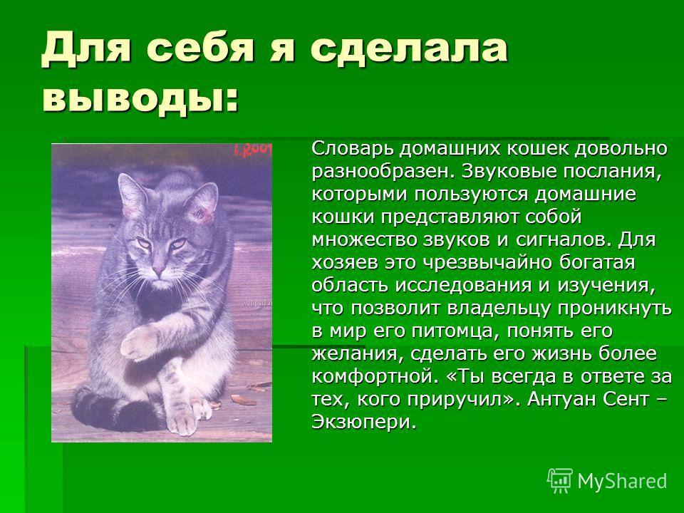Для себя я сделала выводы: Словарь домашних кошек довольно разнообразен. Звуковые послания, которыми пользуются домашние кошки представляют собой множество звуков и сигналов. Для хозяев это чрезвычайно богатая область исследования и изучения, что поз