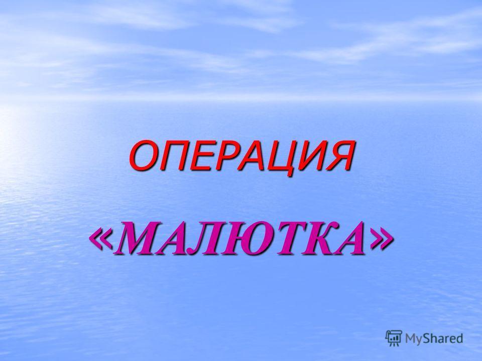 ОПЕРАЦИЯ « МАЛЮТКА »