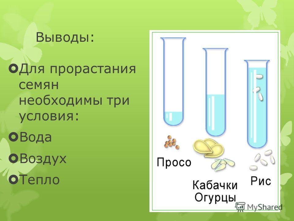 Выводы: Для прорастания семян необходимы три условия: Вода Воздух Тепло