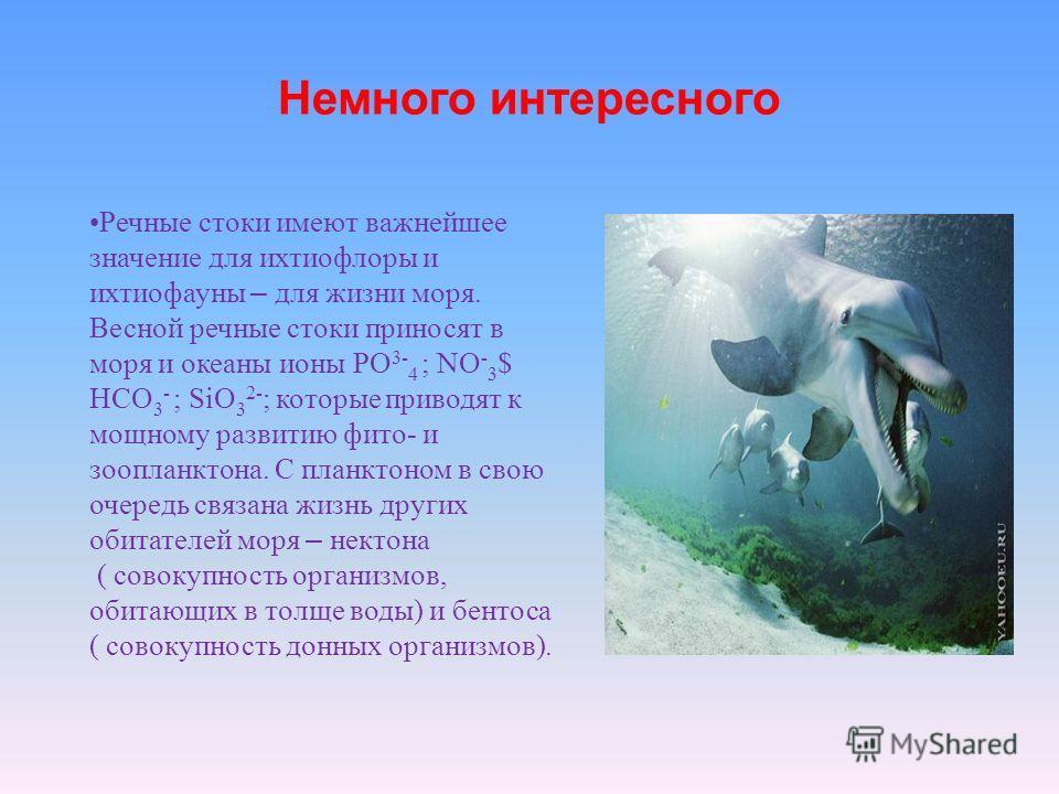 Речные стоки имеют важнейшее значение для ихтиофлоры и ихтиофауны – для жизни моря. Весной речные стоки приносят в моря и океаны ионы РО 3- 4 ; NO - 3 $ HCO 3 - ; SiO 3 2- ; которые приводят к мощному развитию фито- и зоопланктона. С планктоном в сво